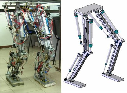 DIEES Biped: A 10 Dofs Pneumatically Actuated Biped Robot
